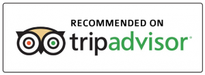 destiny cruises on trip advisor